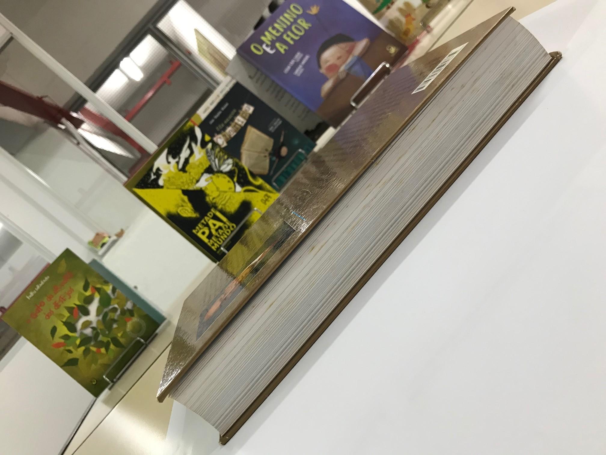 Corte dianteiro do livro, com O gato da árvore dos desejos, Metade pai, metade mundo, O Menino e a flor e Ela nasceu Clarice ao fundo. Imagem ilustrativa texto partes do livro.