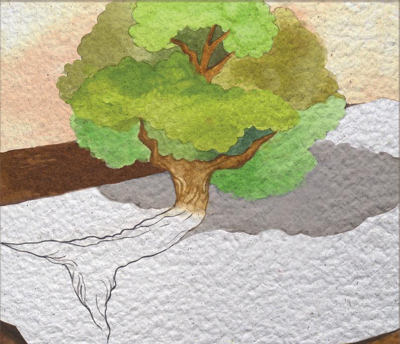 Árvore desenhada se transforma em real. Página 14 do livro Na ponta do lápis. Imagem ilustrativa texto livro de imagem.